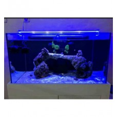 AQUALED LED AYDINLATMA ROYAL MAVİ 100 CM